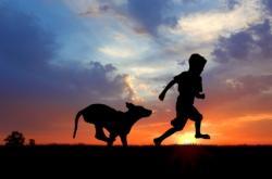 chien-et-enfant_3528_w250