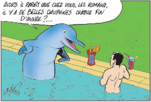 Nager-avec-les-dauphins-un-reve-parfois-accessible_image_article_large