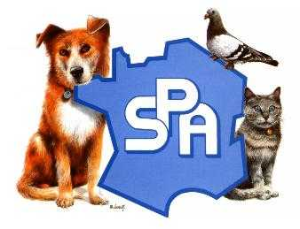 spa_logo - Copie