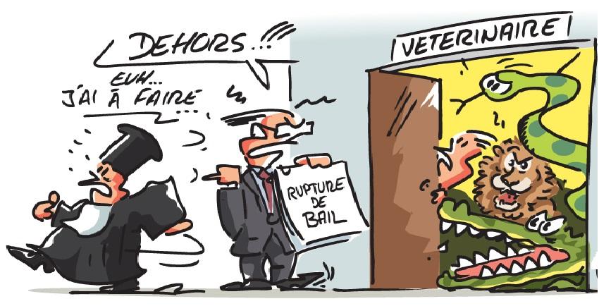 bail-rupture-dehors-vc3a9tc3a9rinaire