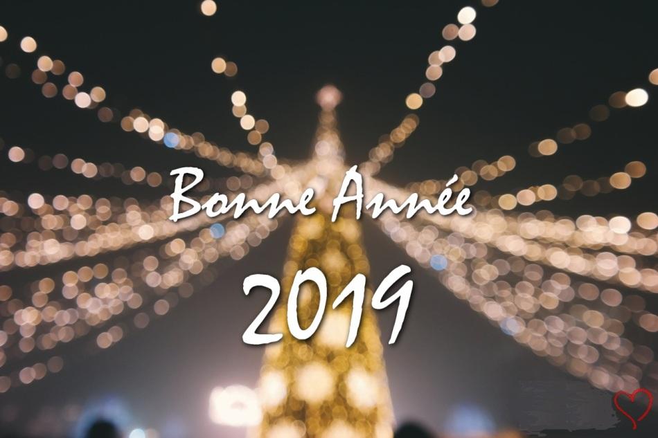 Bonne-année-2019-tourifel